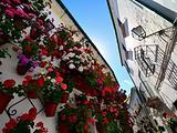 科尔多瓦旅游景点攻略图片