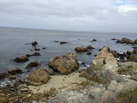 太平洋格罗夫旅游景点攻略图