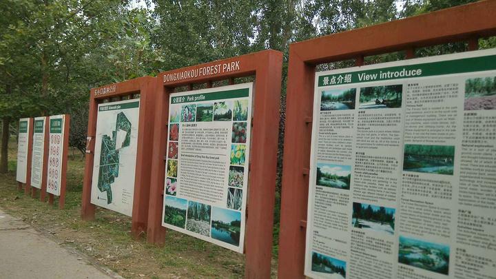 """""""公园面积比较大,地势相对比较平坦,路修的很好,特别适合带孩子来撒野和带宠物来散步_东小口森林公园""""的评论图片"""