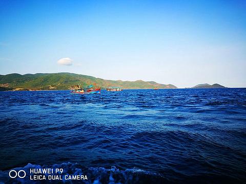 木岛的图片