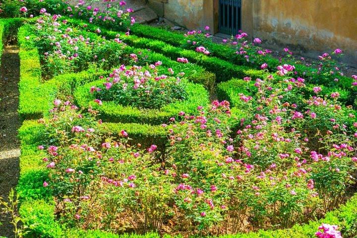 """""""花园可俯瞰佛罗伦萨美景🌸春秋来更美丽😍_波波里花园""""的评论图片"""