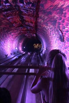 外滩观光隧道旅游景点攻略图