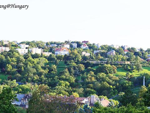 匈牙利自由女神像旅游景点图片