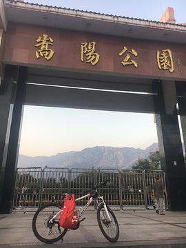 嵩阳公园旅游景点攻略图