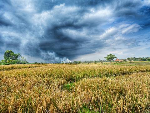 登巴萨旅游景点图片