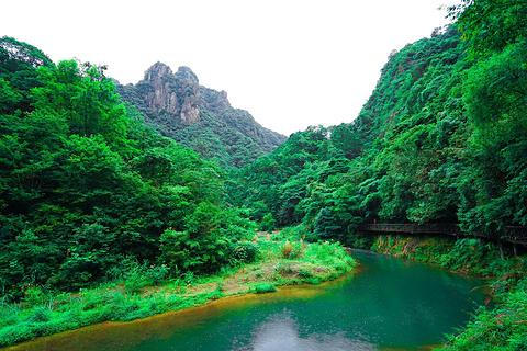 龙湾潭国家森林公园