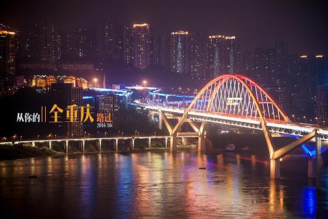 菜园坝长江大桥的图片