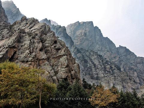 贺兰山岩画旅游景点图片