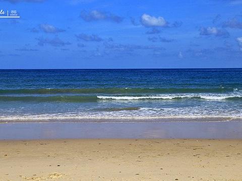 蓝姆岬海滩旅游景点图片