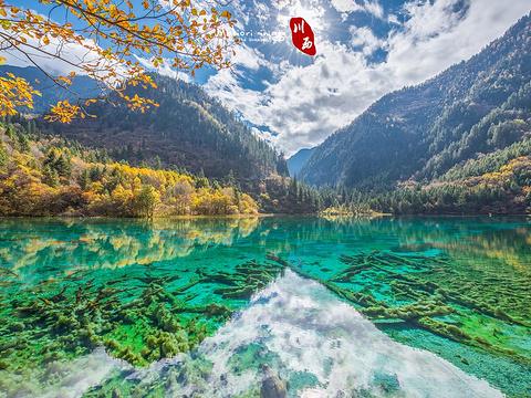 九寨沟风景区旅游景点图片