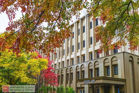 北海道大学的图片
