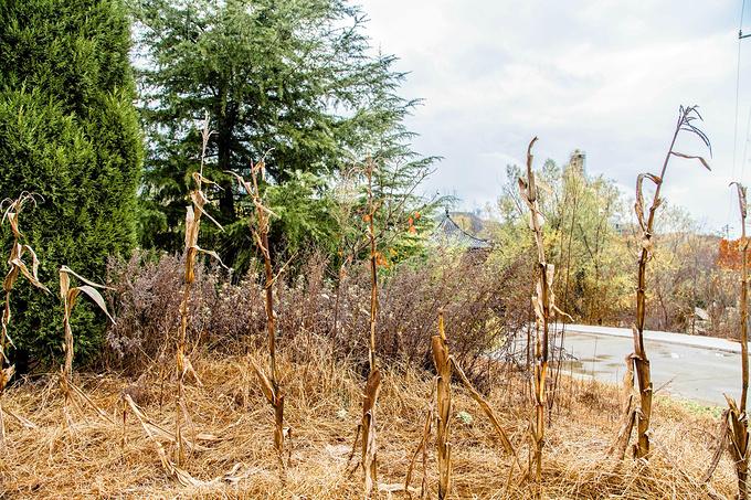 圣经山风景区图片