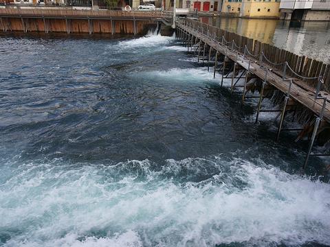 金针水坝旅游景点图片