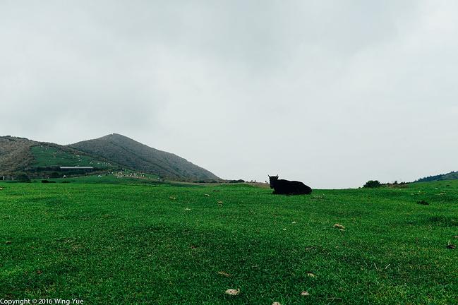 台湾阳明山国家公园旅游地图_【自由行】永州阳明山国家森林公园自由行