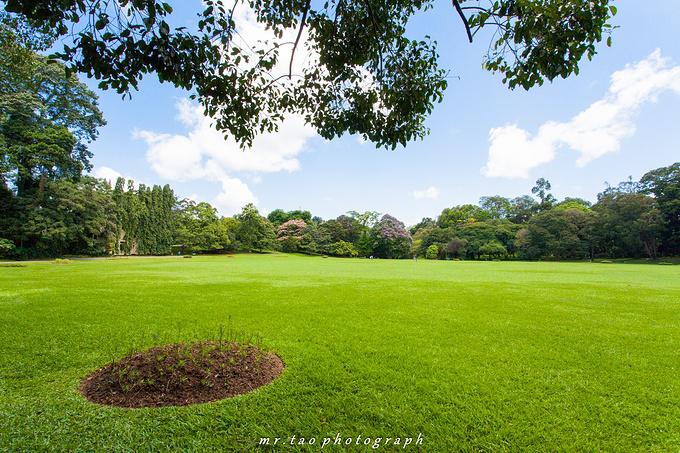 康提皇家植物园图片