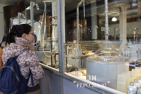 Fragonard香水工厂旅游景点攻略图