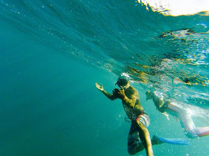 海豚湾图片