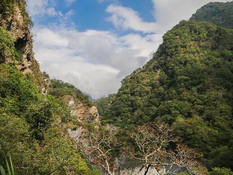 白杨步道旅游景点图片