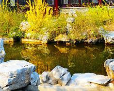 诗句中的江南美景——扬州