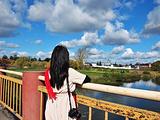 弗拉基米尔旅游景点攻略图片