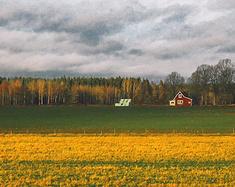 北欧,我的圆梦之旅