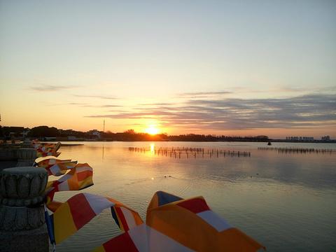 阳澄湖的图片