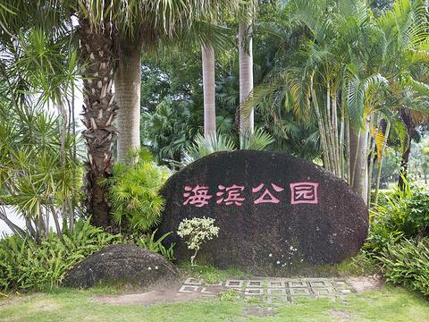 海滨公园旅游景点图片