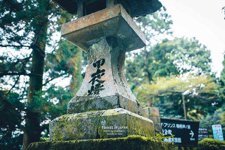 """""""布满青苔的石板,破旧的石灯笼,以及上百年的参天古树。_箱根神社""""的评论图片"""