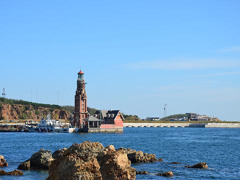 老虎滩海洋公园旅游景点图片
