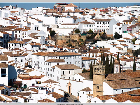 Old City旅游景点图片
