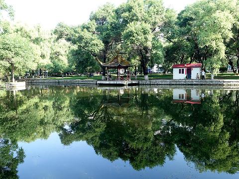 杏林湖公园旅游景点图片