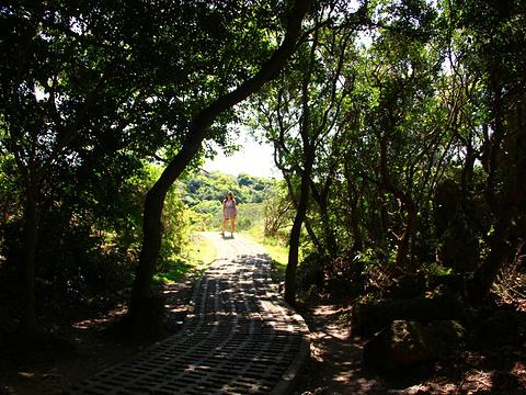 社顶自然公园旅游景点图片