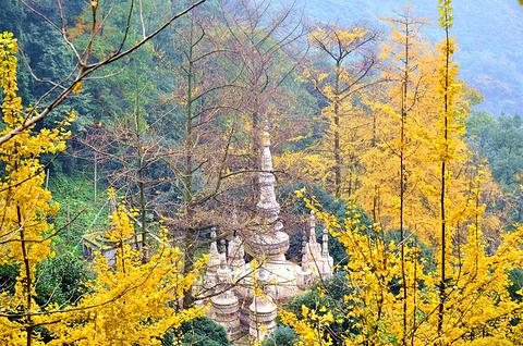 白岩寺的图片