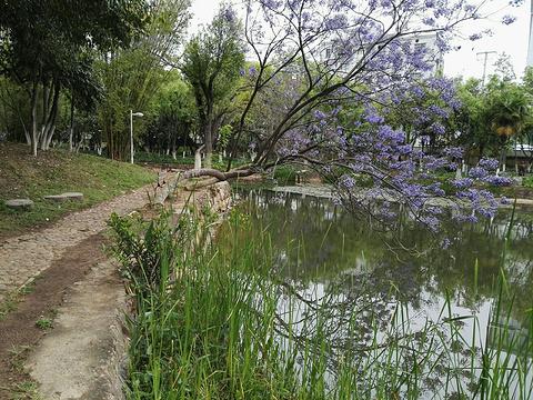 聂耳公园旅游景点攻略图