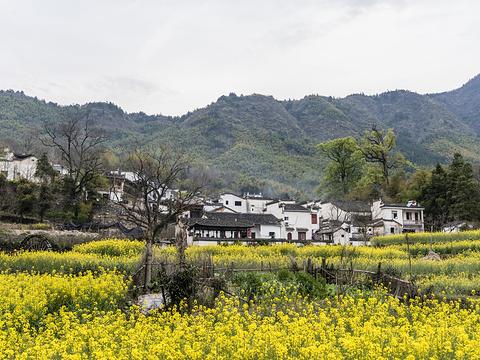 塔川旅游景点图片