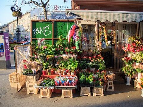 安德拉什大街旅游景点图片