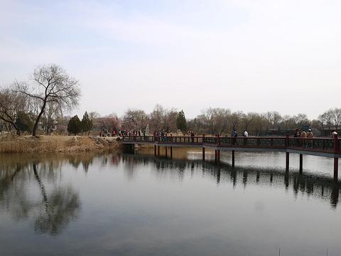绮春园旅游景点图片