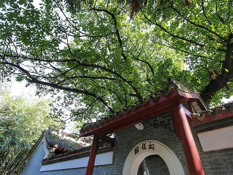 柳侯公园旅游景点图片