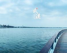【春浪武汉】落樱时节恰逢君。(清明小长假江城行摄记)