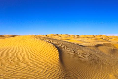 撒哈拉大沙漠旅游景点攻略图