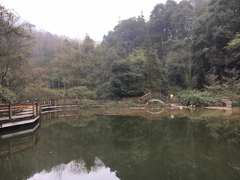 月城湖旅游景点图片
