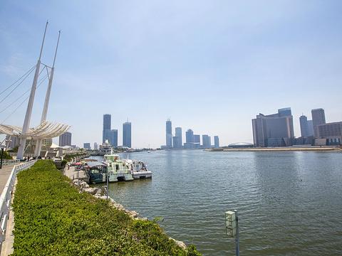 海河外滩公园旅游景点图片