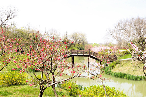 扬州旅游景点图片