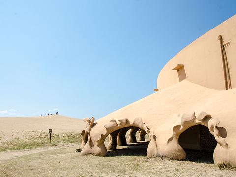 宁夏湿地博物馆旅游景点图片