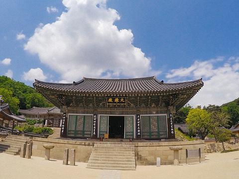 桐华寺旅游景点图片