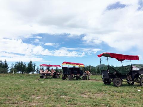 红山军马场旅游景点攻略图