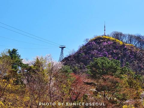 南山公园旅游景点图片