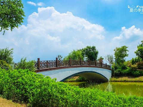 凤凰湖旅游景点图片
