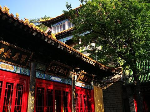 兴国禅寺旅游景点图片