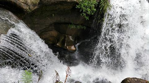 仙霞瀑布的图片